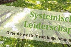boek systemisch leiderschap